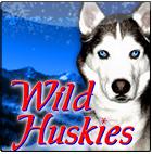 wild-huskies_small.png