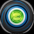 Echo Chip